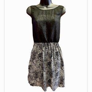 Flirty Black & White Summer Dress